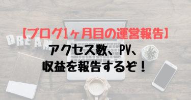 【ブログ1ヶ月目の運営報告】アクセス数、PV、収益を報告するぞ!
