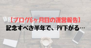 【ブログ6ヶ月目の運営報告】記念すべき半年で、PV下がる…